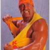 Video Podcasting: Not Everyone Can Be Hulk Hogan
