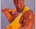 Video Podcasting: Not Everyone Can Be Hulk Hogan